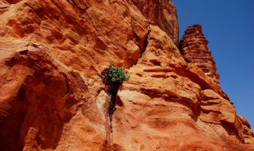 Jordan: Using Eco-Tourism for Sustainable Development