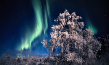 Finland's Network of Green Ecotourism Businesses
