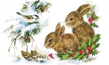 A Christmas Card Story