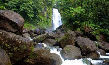 Ecotourism in Dominica: Island Paradise