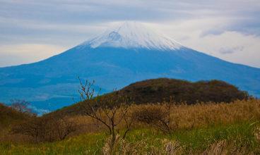 Ecotourism in Japan, land of surprises