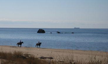 Ecotourism in Latvia: The Baltic's Hidden Treasure