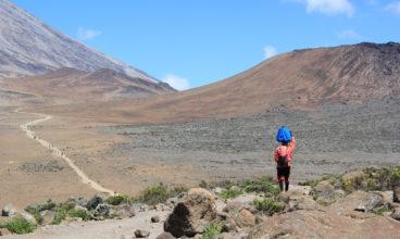 Kilimanjaro Summit and Safari