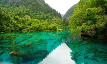 Indulge Yourself In The Natural Beauty of Sichuan Province, China